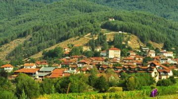 The village of Dobarsko
