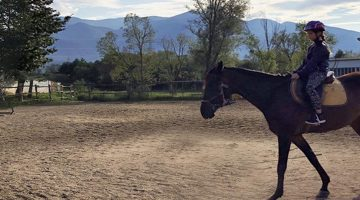 "Horse riding base ""Dvorene"""