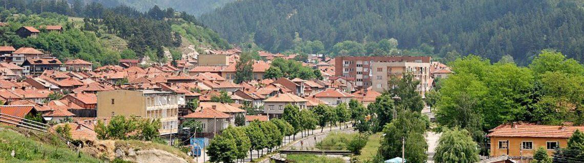 село Елешница