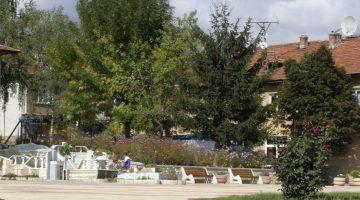 The village of Godlevo