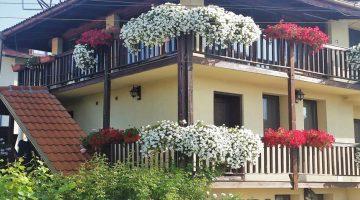 Guest House Deshka