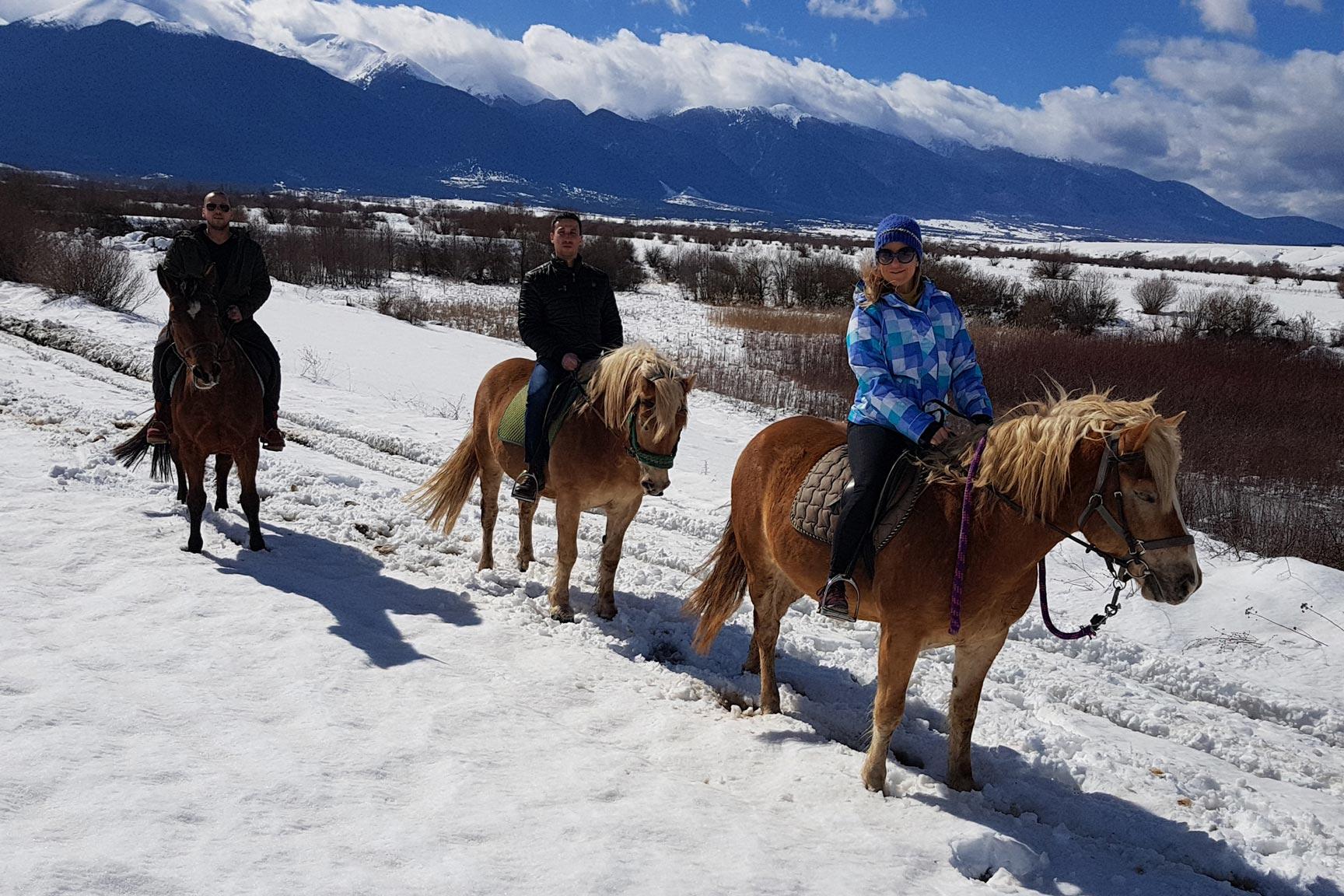 """Клуб за конна езда """"Викора"""""""